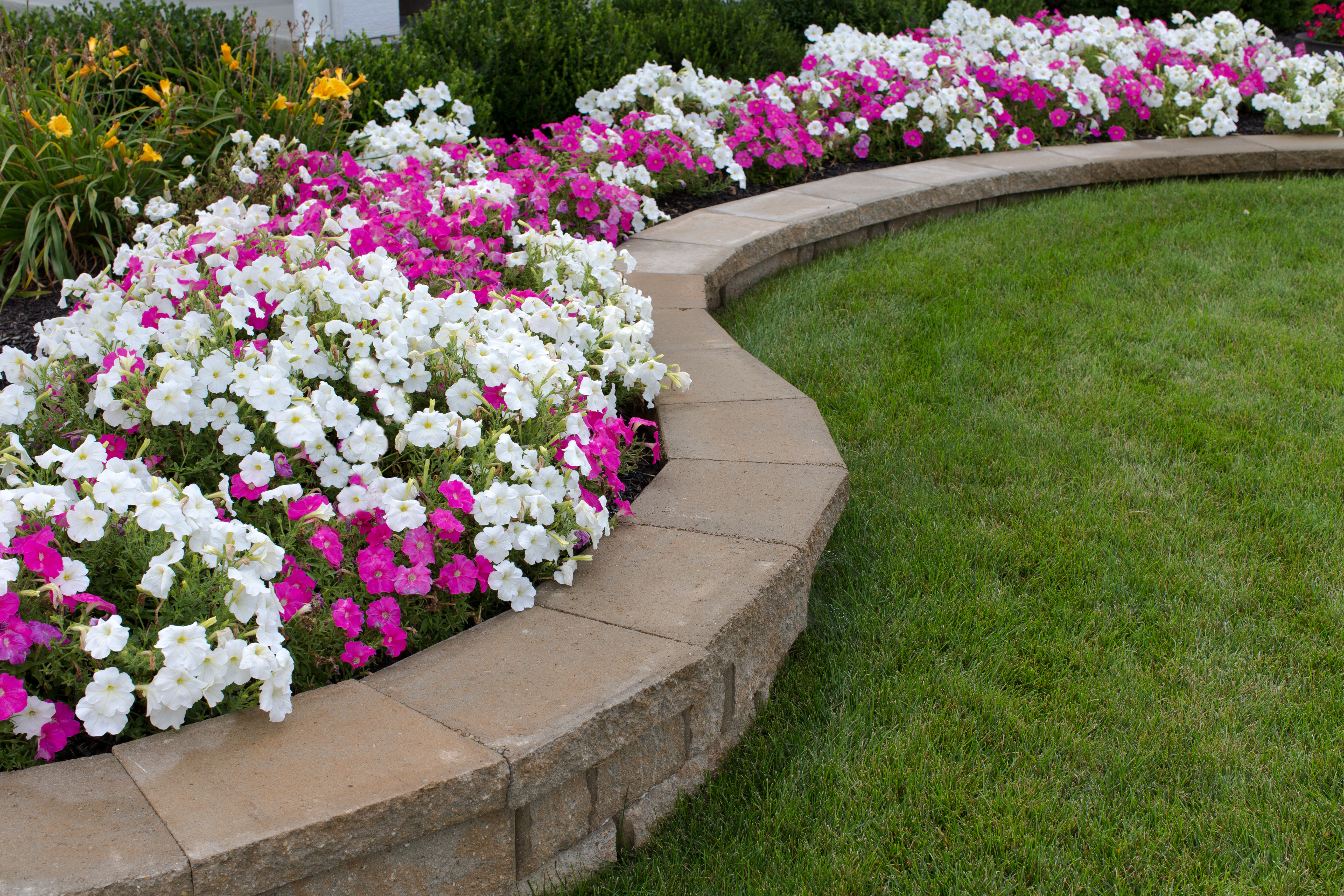 Design Installation Landscaping And Lawn Care Services